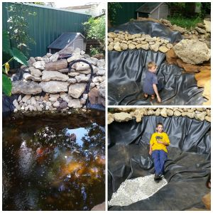 Plans for fall in the back yard serendipityripples for Temporary koi pond